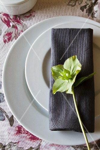 A place setting with two plates and a grey napkin decorated with a green winter rose