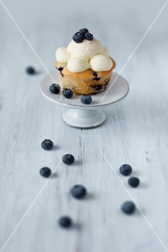 A blueberry cupcake