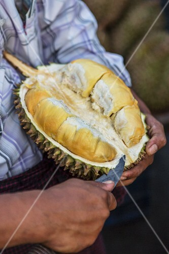 A man preparing a durian (Myanmar)