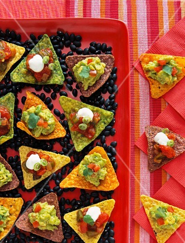 Tortilla chips with spicy salsa and guacomole