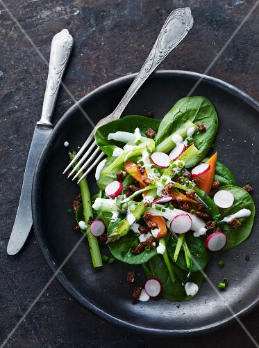 Spinach salad with asparagus, radishes and croutons