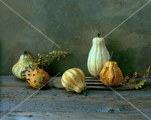 Various ornamental pumpkins on a wooden surface