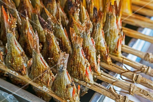 Grilled fish on bamboo sticks in Vientiane, Laos