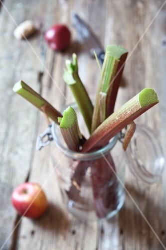 Fresh rhubarb in a preserving jar