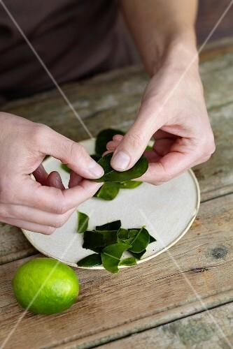 Kaffir lime leaves being shredded
