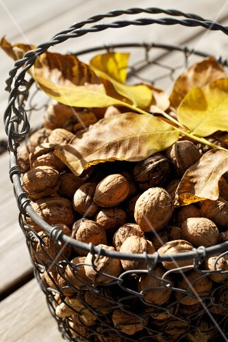 Walnuts in a wire basket