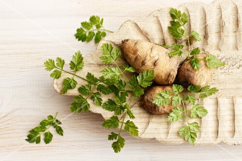 Fresh chervil and chervil roots