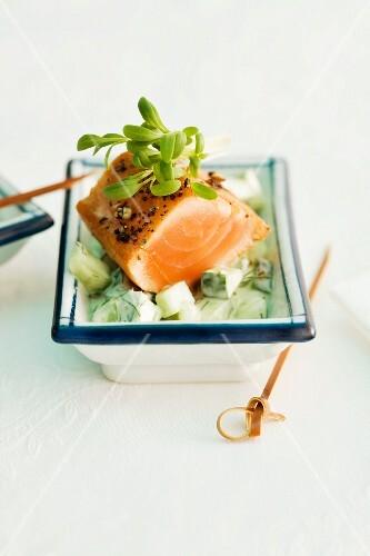 Salmon on wasabi cucumber