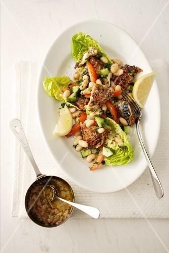 Mackerel salad with white beans
