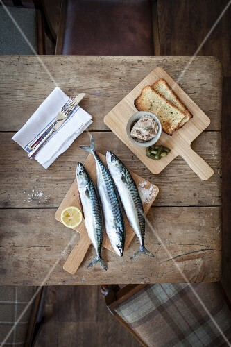 An arrangement of mackerel featuring raw mackerel, mackerel paste and grilled bread