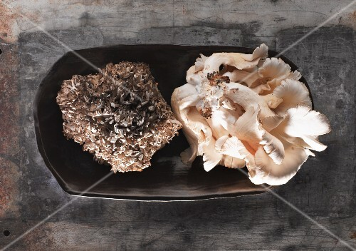 A plate of fresh mushrooms