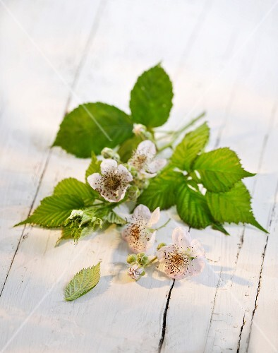 A sprig of raspberries on a wooden surface