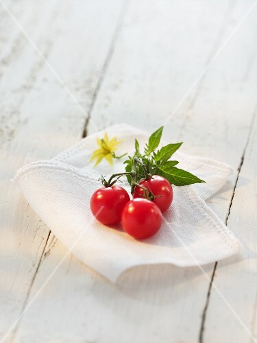Cherry tomatoes with leaves and flowers on a cloth
