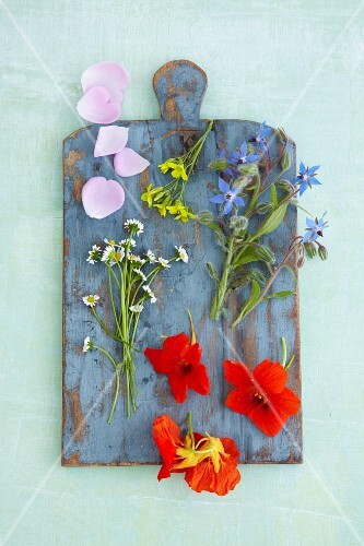 Various edible flowers on a wooden board (seen from above)