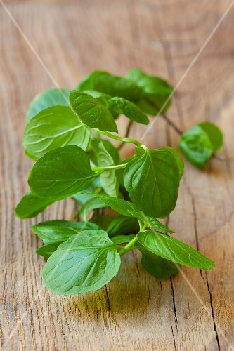 Fresh mint on a wooden surface