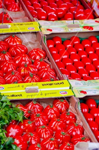 Crates of various tomatoes on a market stand
