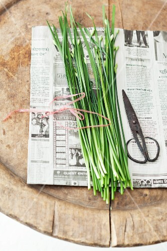 Fresh Thai garlic chives