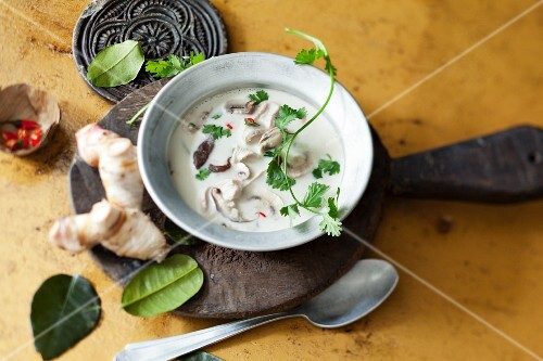 Coconut soup with mushrooms (Thailand)