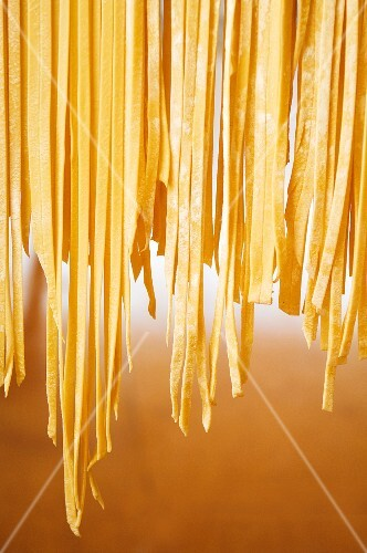 Fresh tagliatelle hanging up to dry
