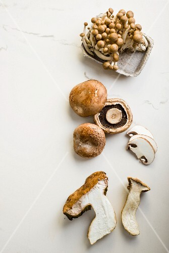 Enoki mushrooms, Portobello mushrooms and porcini mushrooms