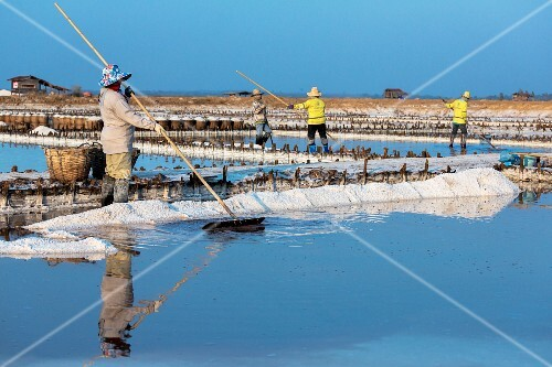 Salt being harvested in the Loei province (North-East Thailand)