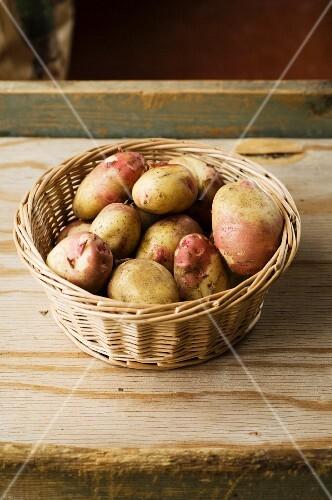 A basket of King Edward VII potatoes