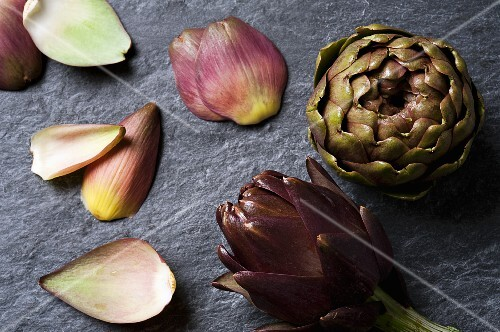 Artichokes and leaves on a slate surface