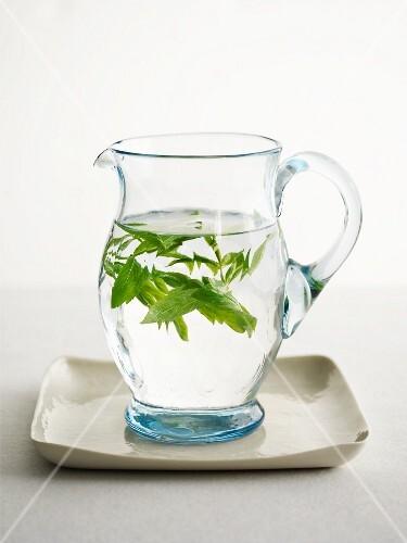Fresh herbs in a jug of water