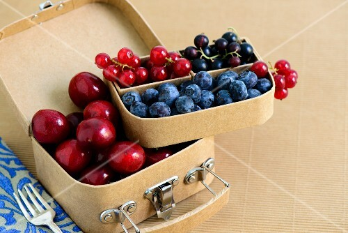 Cherries, blueberries, redcurrants and blackcurrants in a small suitcase