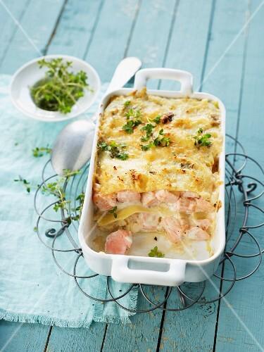 Salmon lasagne