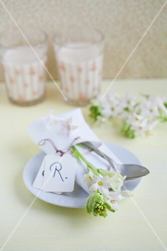 Napkin, cutlery, hyacinths and name tag