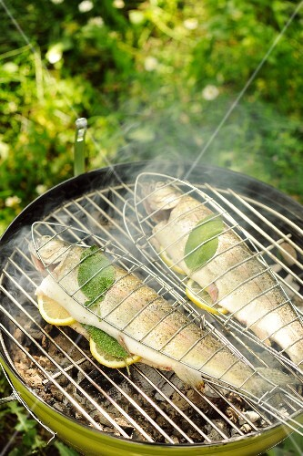 Sage trout on a barbecue