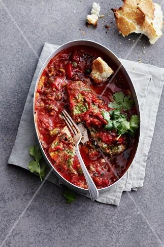 Swordfish in tomato sauce