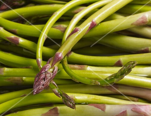 Close up of green Italian asparagus (asparagi pregiati del Tavoliere)