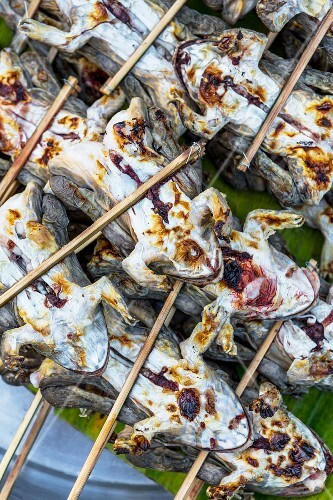 Grilled frogs on skewers