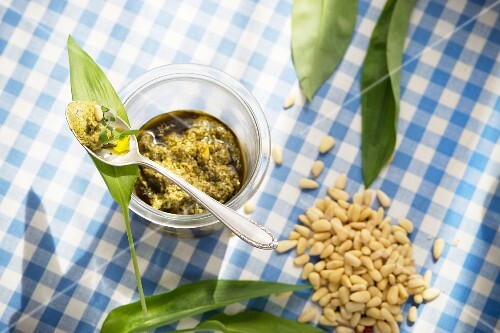 Wild garlic pesto and ingredients