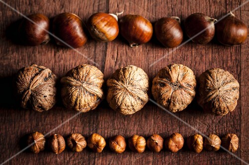Rows of chestnuts, walnuts and hazelnuts on a wooden surface