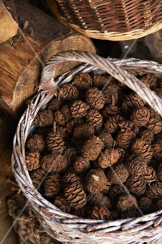 Pine cones in a wicker basket