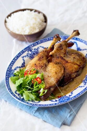 Tamarind duck curry, Thailand