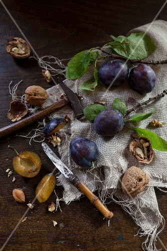 Walnuts and plums with leaves rustic wooden table with a knife and a hammer