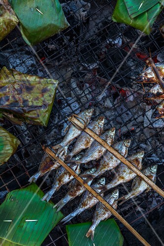 Grilled freshwater fish and banana leaf parcels on a grill (Vientiane, Laos)