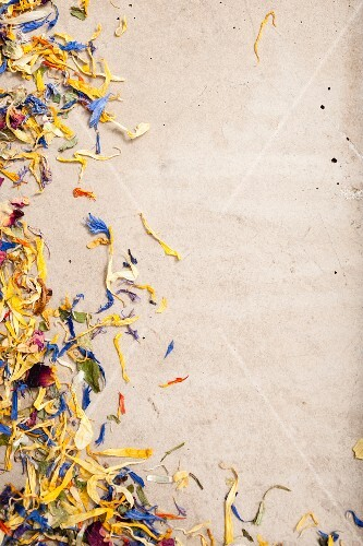 Various dried flower petals at the edge of the picture
