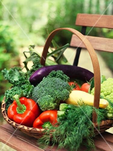 A basket of summer vegetables on a garden bench