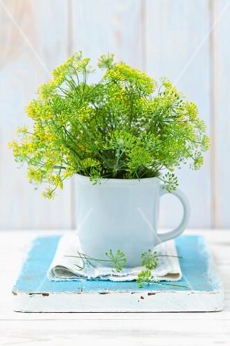 Fresh, flowering dill in a mug