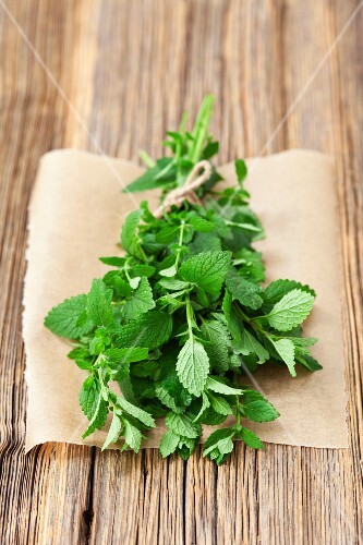 A bunch of fresh, organic lemon balm