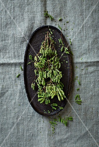 Dried wild oregano on an oval plate