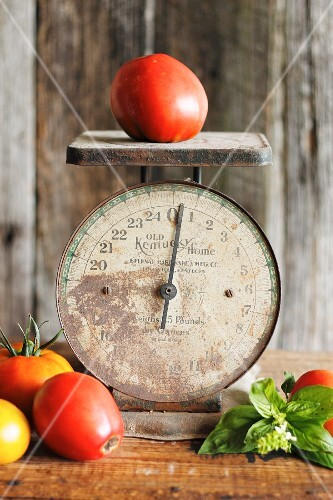 An antique pair of kitchen scales with tomatoes and basil