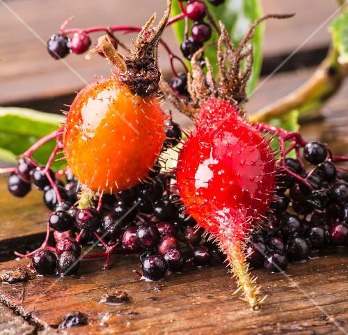 Rosehips and elderberries (close-up)