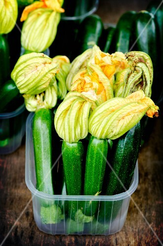 Courgettes with flowers in a plastic box