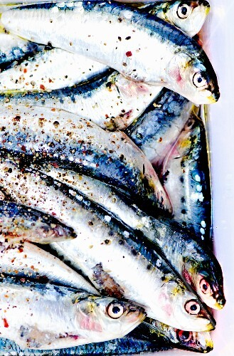 Fresh sardines with olive oil, salt and pepper